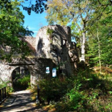 kasteel-ruine-bolzcow